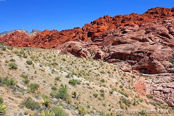 Red Rock Canyon Nevada 10