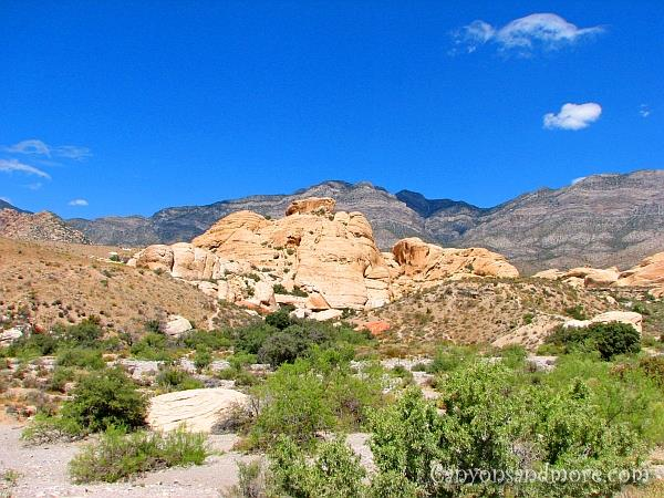 Red Rock Canyon Nevada 5