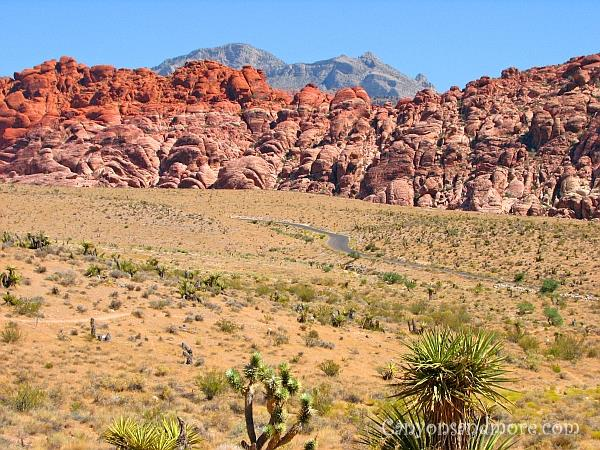 Valley of Fire Nevada 1